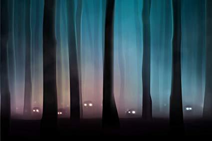 Kera Langka di Hutan