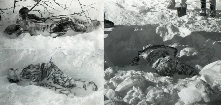 Mayat Para Korban Dyatlov Pass