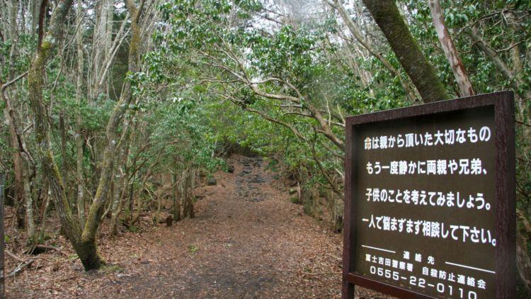 Hutan Aokigahara