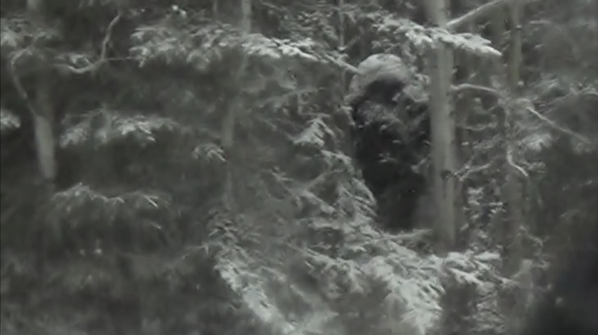 Bigfoot Kanada
