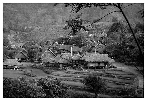 Sisi Lain Misteri Desa Pagadungan Yang Hilang