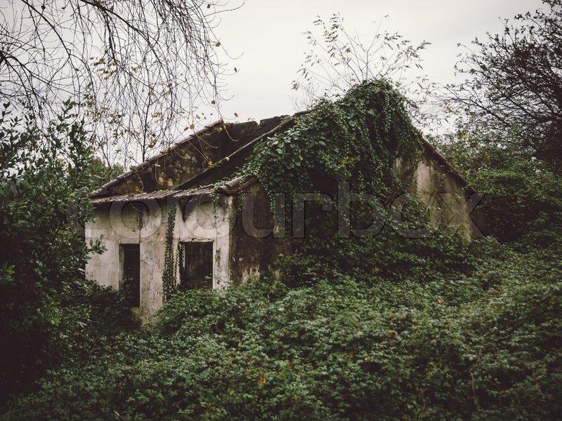 Wajah Hantu Terfoto Di Sebuah Pondok Batu Terbengkalai