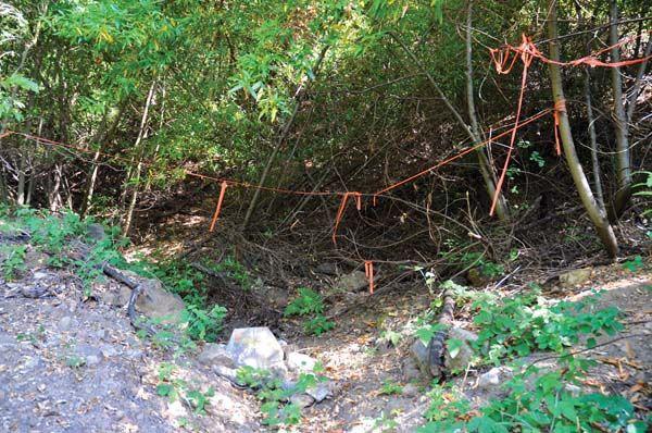 Area Sisa Mitrice Richardson ditemukan