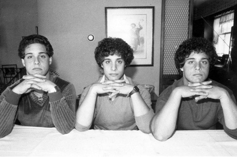 Robert Shafran, Michael Domnitz, David Kellman